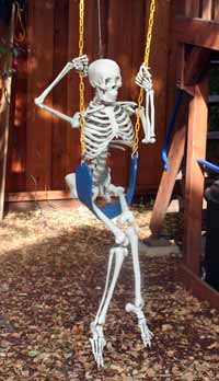 Skeleton on a Motorized Swing